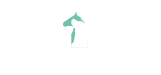Tierarztpraxis Tim Arnholdt – Veterinärmedizin & Tierchiropraktik